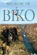 ray_biko-frontcover-for-web